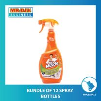MR MUSCLE Mold and Mildew Spray (500ml)